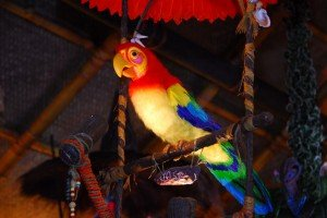 Jose and his friends have come home to roost at Walt Disney World's Enchanted Tiki Room (Photo from the Disney Parks Blog)