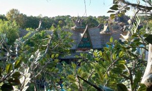 A bird's-eye view of Walt Disney World's Enchanted Tiki Room from atop the Swiss Family Treehouse in Adventureland (November 2011).