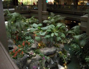 A view of the Polynesian's lobby waterfall from the second floor. It will reportedly be removed during an extensive renovation of the Great Ceremonial House
