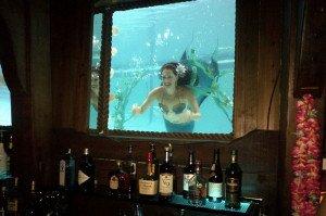 Marina the Fire Eating Mermaid