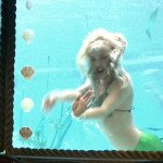 A mermaid in Marina's pod of Aquaticats