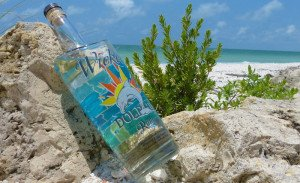 Wicked Dolphin Silver is proudly produced in Florida