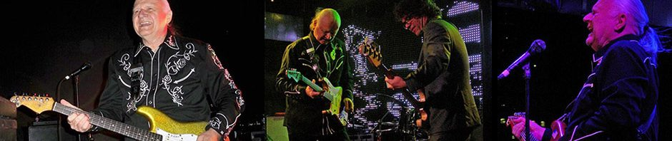 Gone but not forgotten: Surf guitar pioneer Dick Dale, 1937-2019